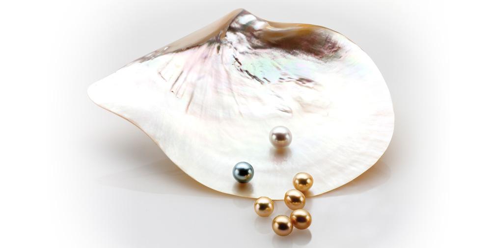 Australian South Sea Pearls