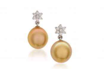 Golden South Sea Pearl Earrings - Broome